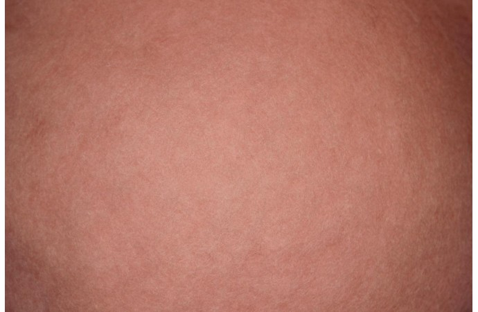 Sakura color carded wool